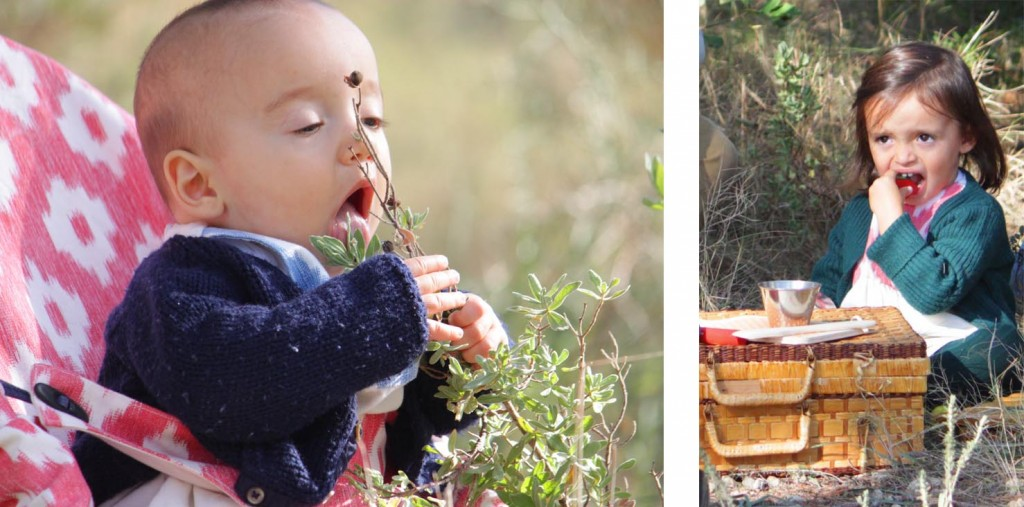 bebe comiendo planta tramuntanababy